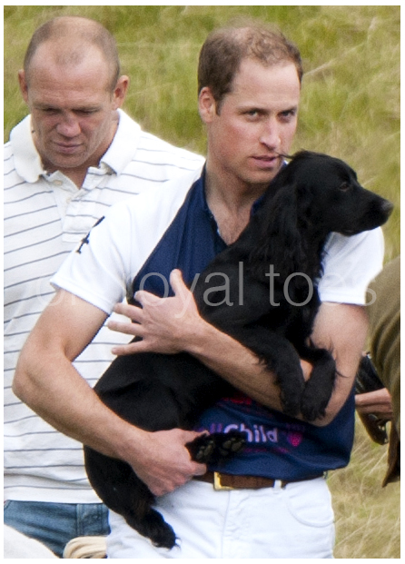 William carries Lupo at the Polo